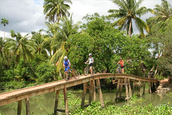 BIKING FULL DAY HO CHI MINH CITY - CAN GIO ECO-FOREST, UNESCO SITE