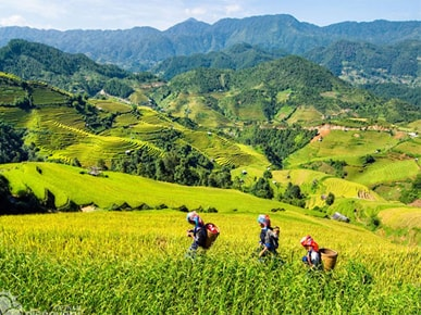 POPULAR ITINERARIES AND OPTIONS TOUR IN VIETNAM