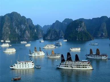 VIETNAM HIGHLIGHT TOUR WITH EASY INDOCHINA TRAVEL